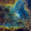 The Heart Nebula, IC 1805,                                Sean Mathews