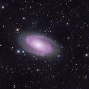 M81 and M82 2021-03-07,                                Greg Harp