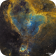 Heart & Fish Head Nebulae,                                David Schlaudt