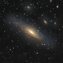 NGC7331 Galaxy, a LRGB image, CPH, Denmark,                                Niels V. Christensen