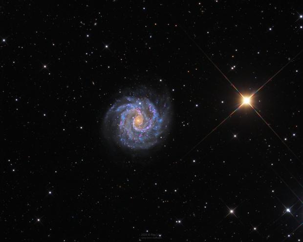 NGC3184 in HaLRGB,                                Ray Liao