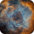 Rosette Nebula - SHO,                                urban.astronomer