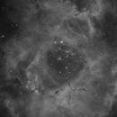 Caldwell 49 - Rosette Nebula,                                Julien Lana