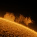 Magnificent Prominence - Sep 1 2021,                                Ilan Shapira