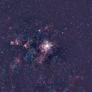 Nebulosa da Tarântula,                                dvd.cabral