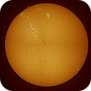 soleil 040913,                                papatilleul