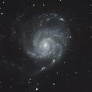 M101 - Pinwheel Galaxy,                                bits__please
