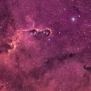 IC1396 - Elephant Trunk,                                Marcel Drechsler