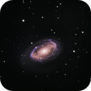 NGC 4725 w/ Stellar Stream,                                Ara