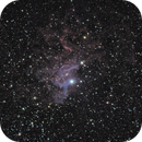 Flaming Star Nebula,                                Ryan Smith