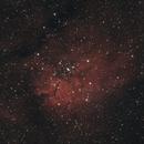 NGC 6823,                                Tom914