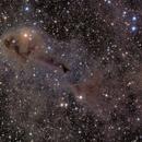 LDN 1251 Lynds Dark Nebula,                                Enrique Arce