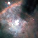 M42 trapezium,                                Elina Niemi