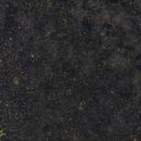 Widefield NGC 6882 / NGC 6940,                                Hans-Peter Olschewski