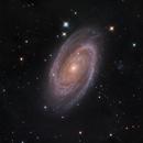 M81,                                Torben van Hees