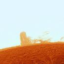 sun_L_04_12_2011new color,                                Giuseppe Petralia