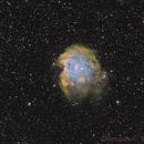 NGC 2174 - Monkey Nebula,                                Riccardo A. Balle...