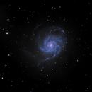 M101,                                Didi
