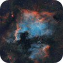 NGC7000 North American Nebula - SHO,                                Ivan Nair