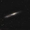 NGC 55, an Irregular Edge On Galaxy in Sculptor  **REV-2**,                                Fernando