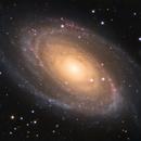 M81 - Bode's Galaxy (LRGB),                                Dhaval Brahmbhatt