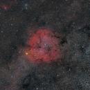 IC 1396 Widefield,                                Bernhard Zimmermann