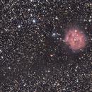 IC5146 The Cocoon Nebula,                                Ray Heinle