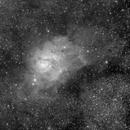 M8 Lagoon Nebula,                                J. Norris