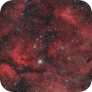 IC1318 Sadr Gamma Cygni region,                                tommy_nawratil