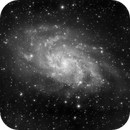 Messier 33 in Black and White,                                Georges