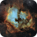 NGC 7000 Northamerica- and IC 5070 Pelican Nebula,                                Roland Schliessus