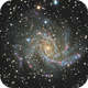 NGC 6946, the Fireworks Galaxy,                                Mason Steidle