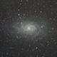 M33,                                Felix