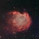 Monkeyhead Nebula SE London + Full Supermoon HOS,                                Carastro