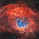 Sh2-261 Lowers nebula HTS,                                Vadim Kozatchenko