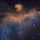 Seagull Nebula - IC 2177,                                Jason Doyle Sr