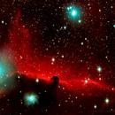 The Horsehead Nebula (Barnard 33) November & December 2017,                                Rodney Michael