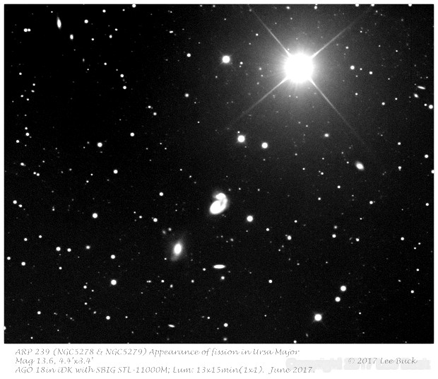 ARP 239 (NGC5278 & NGC5279) Appearance of fission in Ursa Major,                                elbee