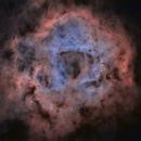 starless rosette nebula,                                erq1