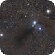 The Anteater Nebula,                                Gary Plummer