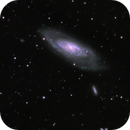 M106 and friends,                                starfield