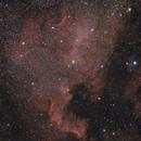 NGC 7000 North America Nebula,                                Gene