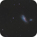 NGC 4490 & NGC 4485, the Cocoon Galaxy,                                Mark L Mitchell