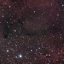 IC 1396 Elephant's Trunk,                                Fabio Zucconi