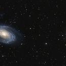 M81, M82 and SN2014J,                                astrocusanus