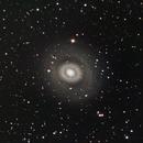 M94,                                Carl Newberg
