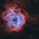 NGC 2244 Rosette Nebula in BiColor,                                D@vide