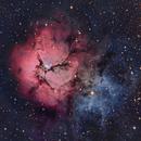 M20, Trifid Nebula,                                tdsdmd