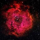Rosette Nebula,                                Jace Cook