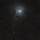 Iris Nebula,                                Travin